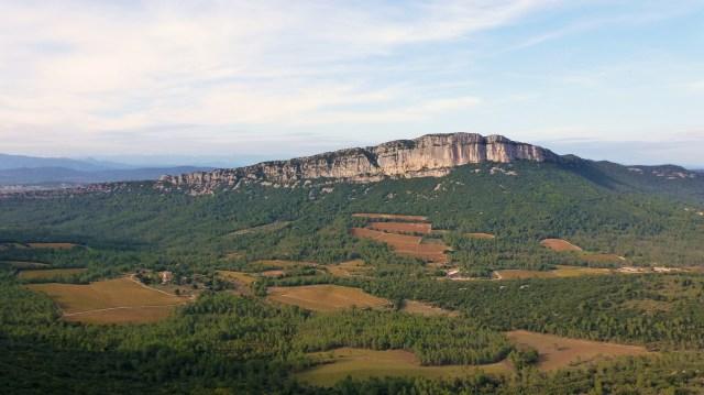 Les Vignes du Mas Bruguière entre le Pic Saint Loup et l'Hortus (vue du Pic Saint Loup)