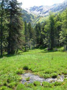 Vallée du Passet, au fond le massif du Carlit